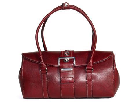 5cb9dd0897f7 Vegan Shoes & Bags: Vegan Prada-Inspired Handbag